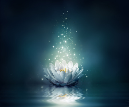 fairytale background: waterlily on water - fairytale background  Stock Photo
