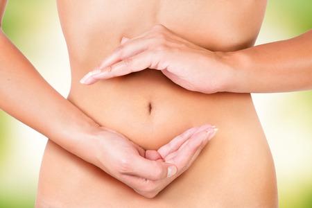 sistema digestivo: ciclo en el interior del cuerpo de la mujer, círculo de la digestión, la menstruación