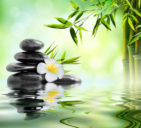 black stones: spa massage treatment in garden with frangipani and bamboo