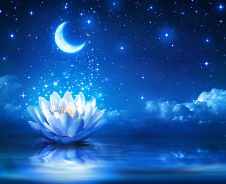 grzybienie i księżyc w gwiaździstą noc - magia tle Zdjęcie Seryjne