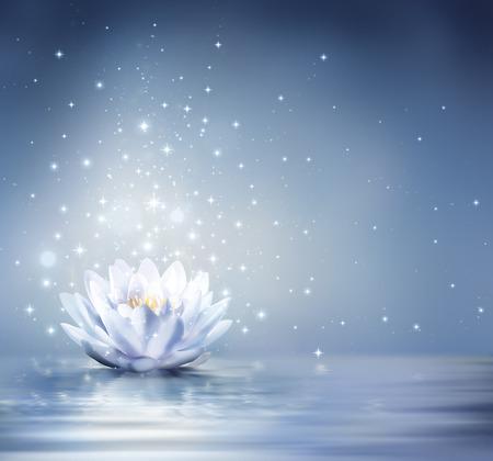 stelle blu: blu waterlily luce su sfondo acqua - favola