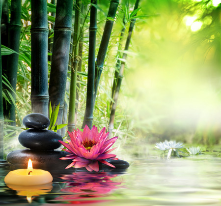 bamboo therapy: Massage in nature - lily, stones, bamboo - zen concept