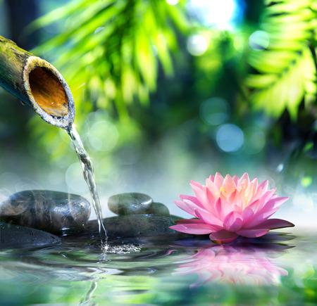 piedras zen: jardín zen con piedras negro y rosa waterlily Foto de archivo