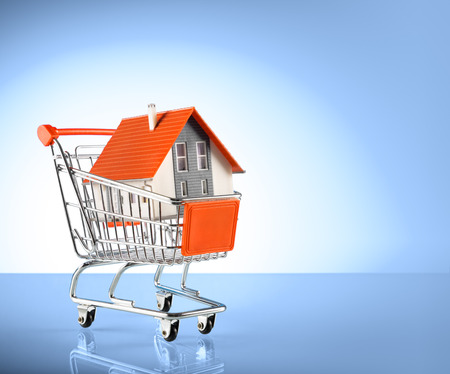 shoppingcart: house in shopping-cart - for real estate background