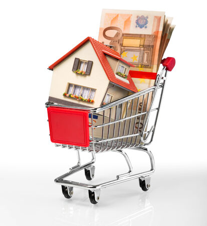 shoppingcart: house in shopping-cart with euro bills