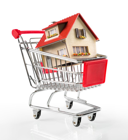 shoppingcart: house in shopping-cart