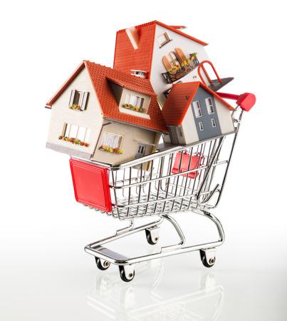 shoppingcart: many houses in shopping-cart