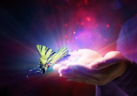 butterfly in hands - fairytale and trust Standard-Bild