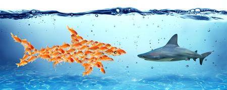 peces de colores: La unión hace la fuerza - concepto del trabajo en equipo