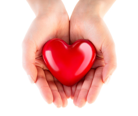 heart in hands  donation of love