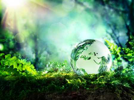 conservation: globe on moss in a forest - Europe - environment concept Stock Photo