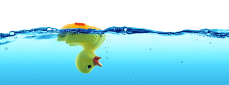 drown: duck drowned  failure and SOS concept Stock Photo