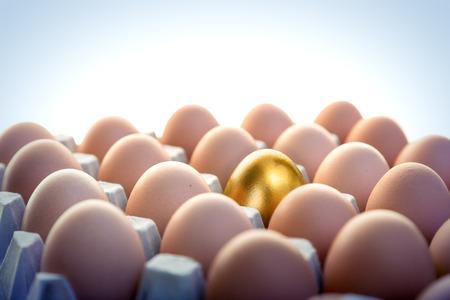 gallina con huevos: Huevo de oro entre los huevos de gallina en paquete