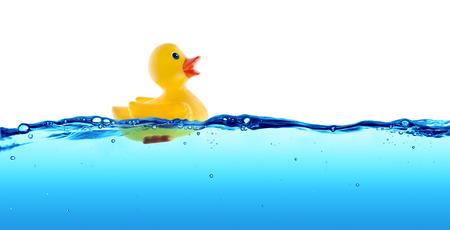 Caucho flotador de pato en el agua Foto de archivo - 43828220