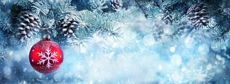 evergreen branch: Decoración de la Navidad para la bandera - chuchería roja que cuelga rama de abeto Foto de archivo