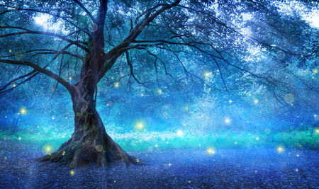 fairy tree: Fairy Tree In Mystic Forest Stock Photo