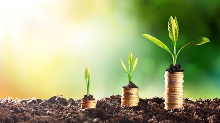 Growing Money - Graphique En Hausse Banque d'images - 51918418