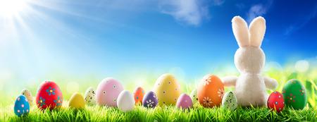 lapin: Lapin avec oeufs décorés sur Sunny Meadow - Printemps Et Contexte de Pâques