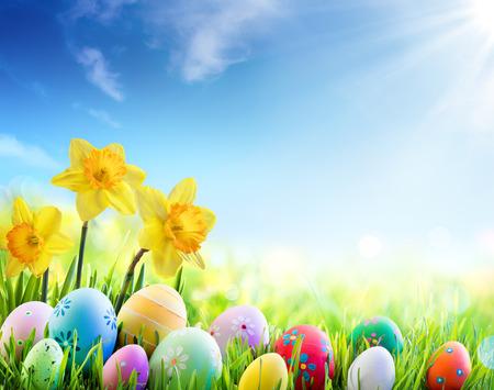 Narcisos e Ovos decorados coloridos no Sunny Meadow - fundo do feriado da páscoa