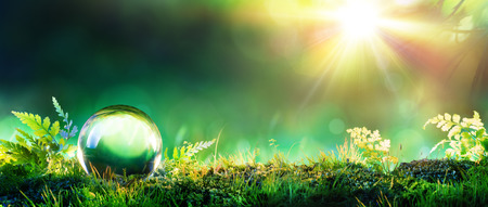moss: Crystal Green Globe On Moss - Environmental Concept Stock Photo