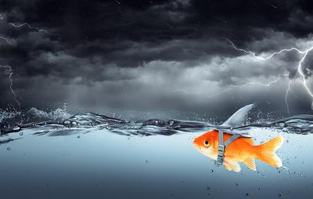 テンペスト - ビジネス コンセプトで泳いでいる大きなサメの野望を持つ小さな魚