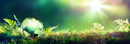 glass globe: Green Globe On Moss - Environmental Concept