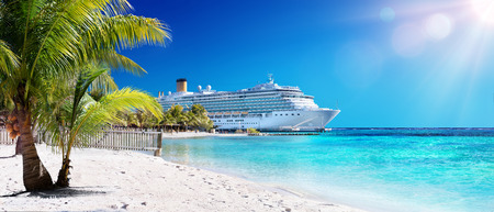 caribbean cruise: Cruise To Caribbean With Palm tree On Coral Beach
