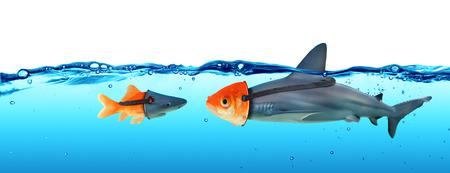 Deception Concept - Disguise Between Shark And Goldfish Reklamní fotografie - 58151283