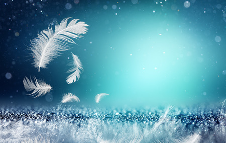 softness: Softness And Freshness Concepts - Feathers And Dew