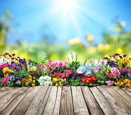 Wooden Desk With Flowers In Garden Stock Photo - 74354615