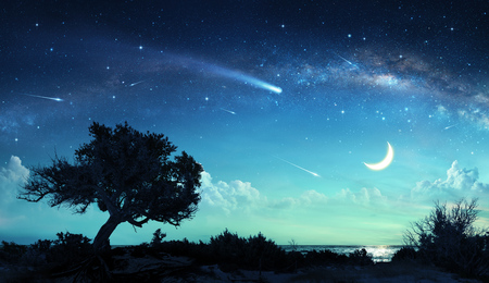 Shooting Stars In Fantasy Landscape At Night Banco de Imagens - 83698165