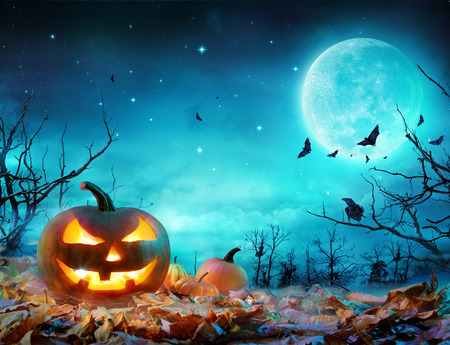 Pumpkin Glowing At Moonlight In The Spooky Forest - Halloween Scene Stock fotó - 85726286