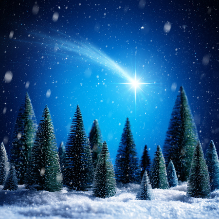 Christmas Star Shot In Snowy Night On Silent Forest Archivio Fotografico