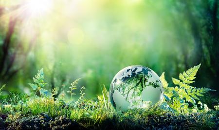 Globo en musgo en bosque - concepto ambiental Foto de archivo