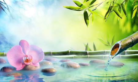 Jardín Zen - Orquídea en fuente japonesa con rocas y bambú Foto de archivo