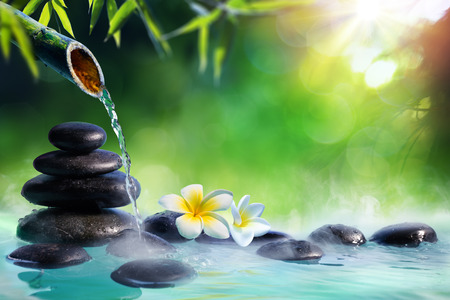 Plumeria Flowers In Japanese Fountain With Stones And Bamboo Massage - Zen Garden Banque d'images