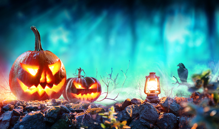Halloween Pumpkins In Spooky Forest With Lantern And Crow Stock Photo