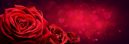 Red Roses In Heart Shape With Red Passion Background Archivio Fotografico - 116640058