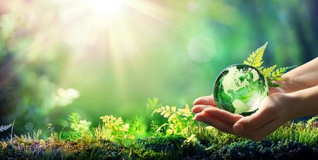 Manos sosteniendo globo de cristal en bosque verde - concepto de medio ambiente