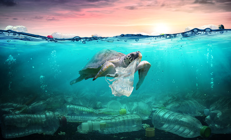 Contaminación plástica en el océano - Tortuga come bolsa de plástico - Problema ambiental Foto de archivo