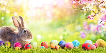 Adorable Bunny With Easter Eggs In Flowery Meadow Archivio Fotografico - 119611325