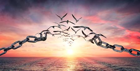 Sulle ali della libertà - Uccelli in volo e catene spezzate - Concetto di carica
