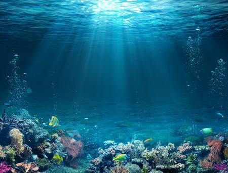 Scena subacquea - fondale marino tropicale con barriera corallina e sole