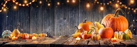 Thanksgiving - Pumpkins And Corncobs On Rustic Table