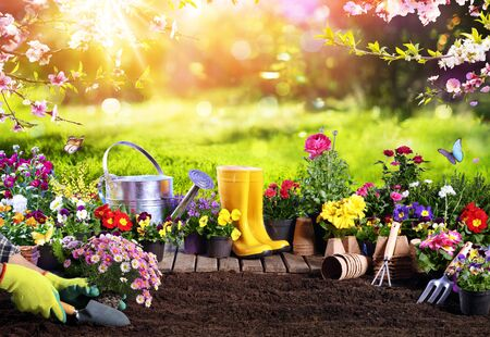 Spring Gardening Flowerpots An Equipment In Sunny Garden