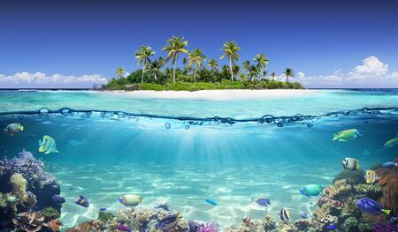 Split View Of Tropical Island And Coral Reef