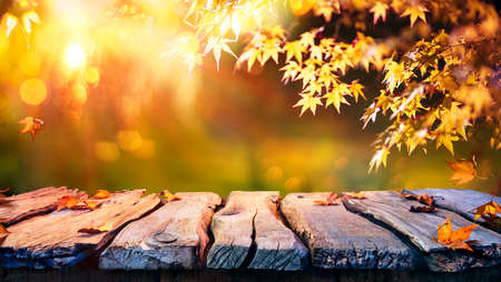 Wooden Table With Red And Yellow Leaves At Sunset - Autumn Background Stok Fotoğraf