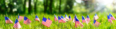American Flags In Grass - Defocused Abstract Memorial Day background 写真素材