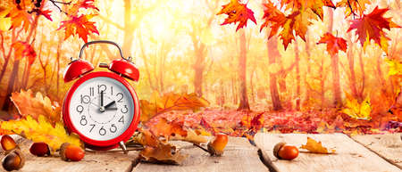 Fall Back Time - Daylight Savings End - Clock Alarm And Leaves In Autumn Background 写真素材