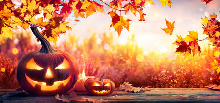 Pumpkins On Autumn Table With Leaves And Candles Sunny Background 写真素材